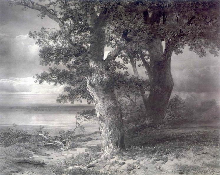 Дубы на берегу. 1867