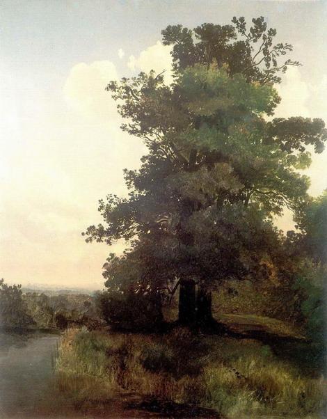 Дубы. 1855